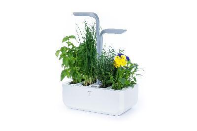 Potager à herbes intelligent